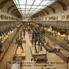 Museum de sciences naturelles (Paris)